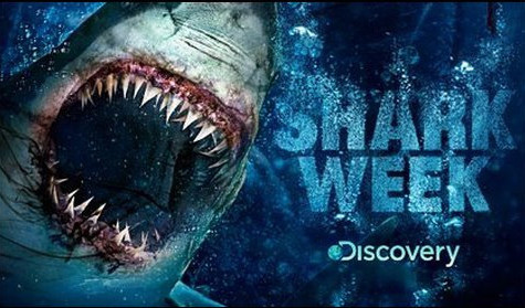 Shark Week swims to the top of TV ratings