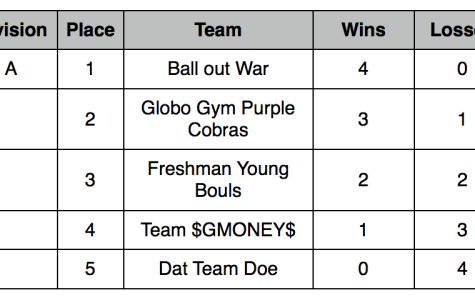 2013 Fall Dodgeball Tournament Results