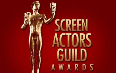 The Screen Actors Guild (SAG) awards will recognize many shows