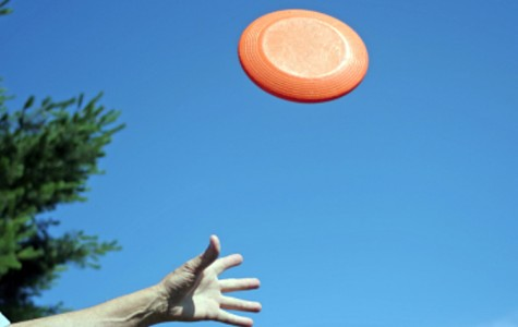 The Ultimate Frisbee Club meets during the summer months