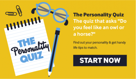 Personality quizzes provide external validation