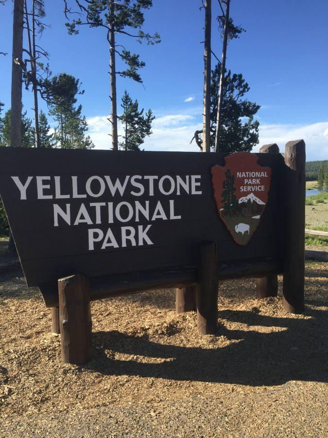 According+to+the+National+Park+Service%2C+the+human+history+of+the+Yellowstone+region+goes+back+more+than+11%2C000+years.