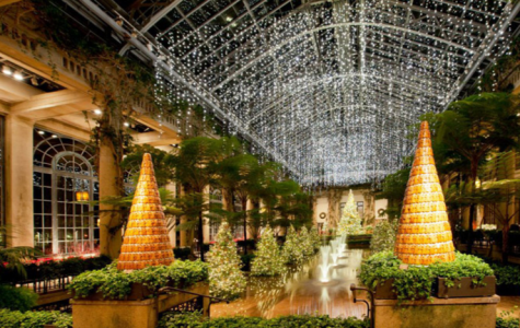 From November 24th to January 8th, people from all around come to Longwood Gardens to enjoy their Christmas event.