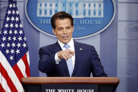 Scaramucci named White House Communications Director