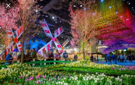 "The 2018 Philadelphia Flower Show aims to show the ""Wonders of Water."""