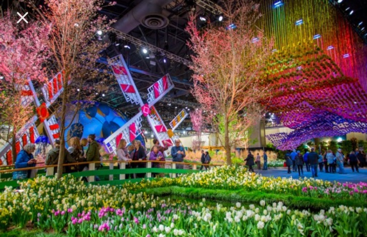 The+2018+Philadelphia+Flower+Show+aims+to+show+the+%E2%80%9CWonders+of+Water.%E2%80%9D