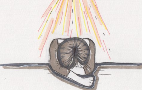 Shining a Light on Mental Illness