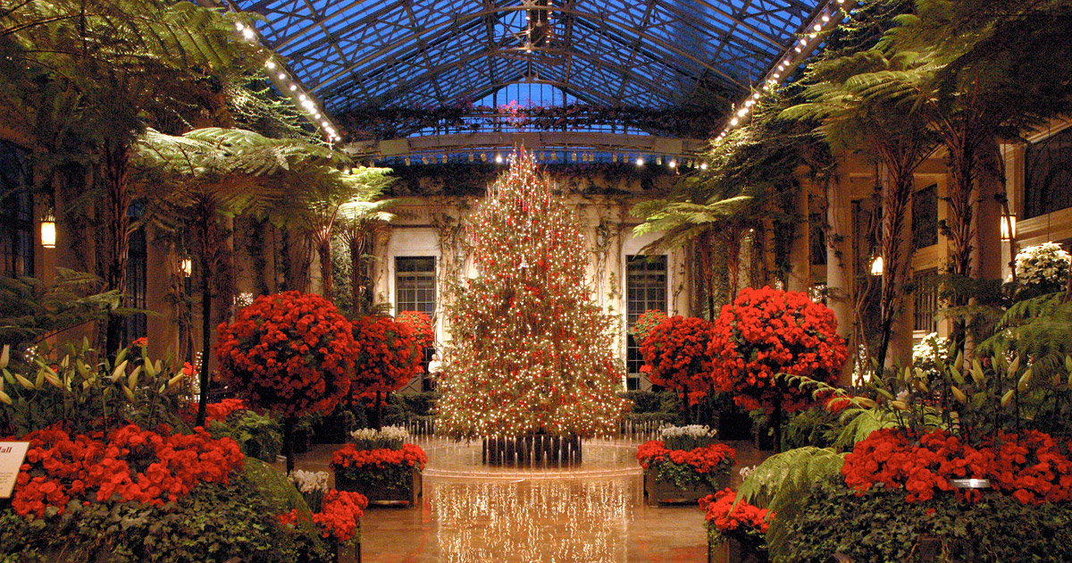 The illuminated Conservatory of Longwood Gardens shines bright during the night.