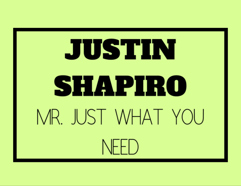 Mr. Just What You Need (Justin Shapiro)