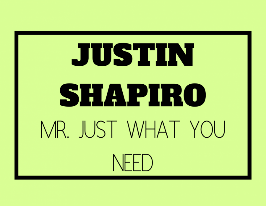 Mr.+Just+What+You+Need+%28Justin+Shapiro%29