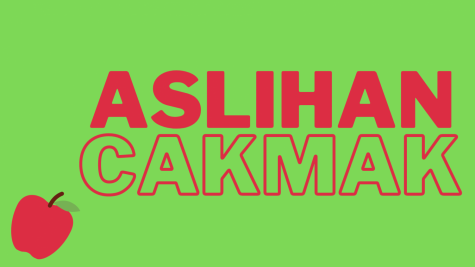 Aslihan Cakmak is one of the 2020 Board of Education candidates.
