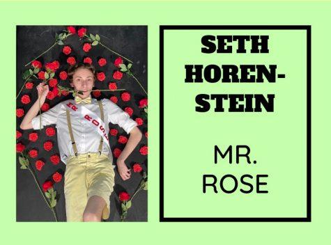 Seth Horenstein (