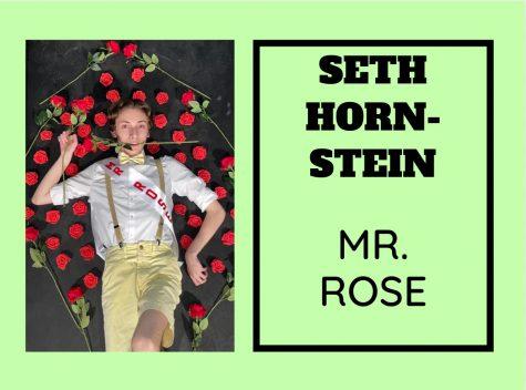 Seth Hornstein (