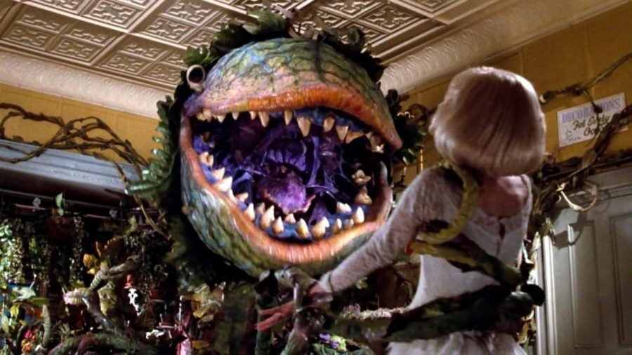 Little Shop of Horrors is a classical 1986 movie that will be produced by East in both virtual and in-person plays.