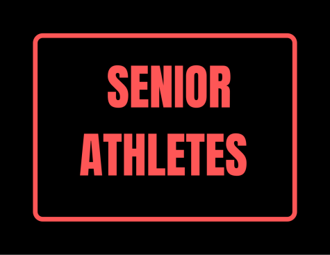 Many senior athletes had a very successful 2020-2021 season and finished off their last year strong.
