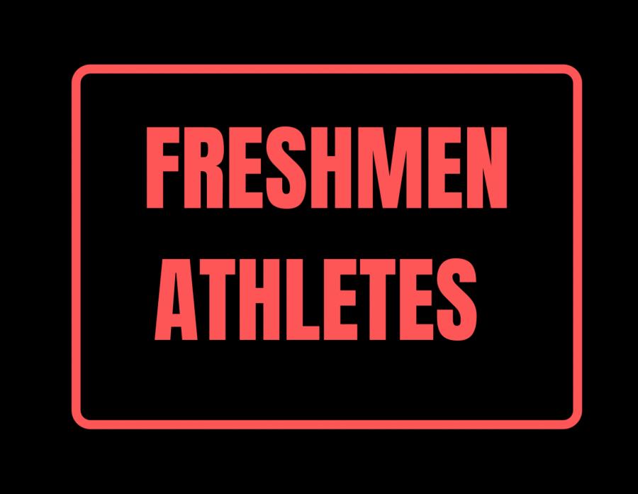 Many freshmen had a very successful 2020-2021 season.