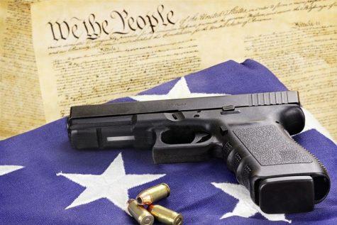 Why Gun Control Laws need reform