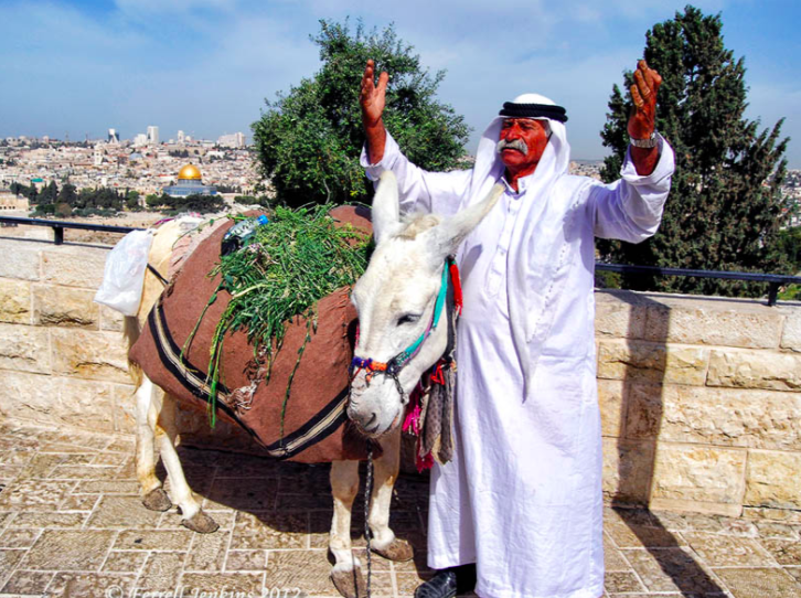 Jerusalem Syndrome is the odd condition in which someone who travels to Jerusalem feels as though they are a biblical figure.