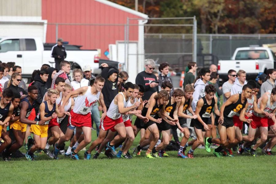 East+Cross+Country+Boys+fail+to+qualify+for+the+next+round+of+playoffs