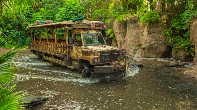 The Safari at Animal Kingdom