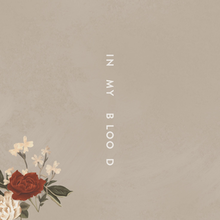 Shawn Mendes's new single,