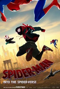Spider-Man: Into the Spider-Verse was released on December 14, 2018.