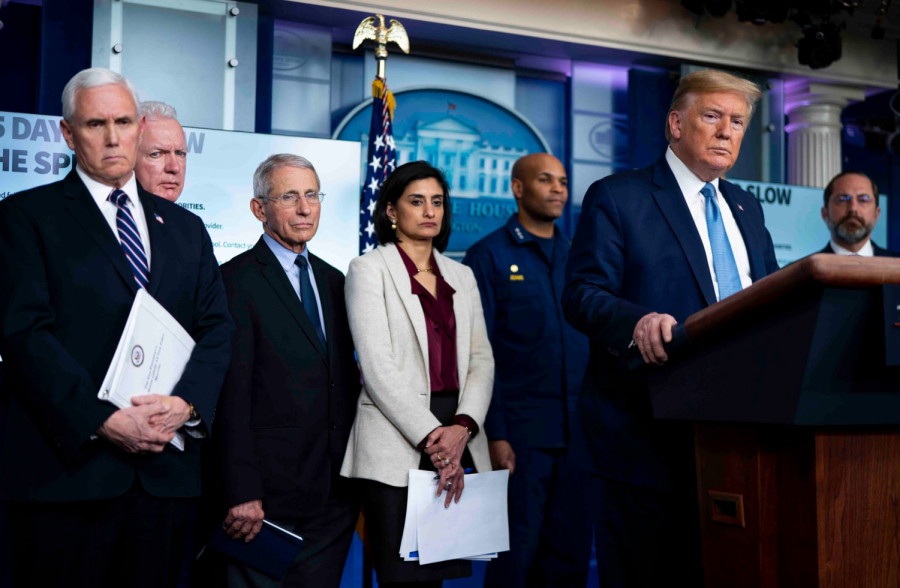 Donald trump talks to the media about the US response to COVID-19