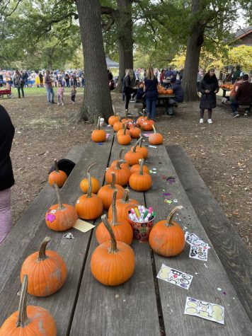 Pumpkin decorating at the Collingswood Fall Festival provided entertainment for everyone there.